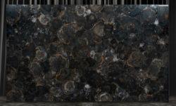 Black Petrified Wood Jumbo Polished 17T529