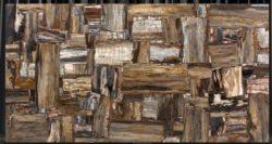 Retro Brown Petrified Wood Polished 17T529