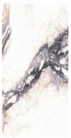Gigantic Renoir Extreme A